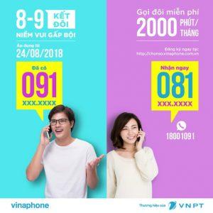 Cách đăng ký sim cặp đôi Vinaphone nhanh chóng, thuận tiện