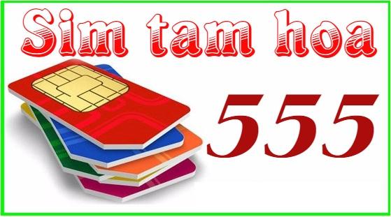 sim tam hoa 555 là gì